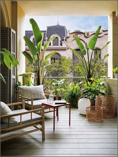 25 ideas enclosed patio design plants for 2019 Small Balcony Design, Small Balcony Garden, Small Balcony Decor, Balcony Flowers, Patio Design, Exterior Design, Balcony Plants, Potted Plants, Terrace Design