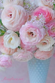 All Things Shabby and Beautiful Most Beautiful Flowers, Pretty Flowers, Belle Image Nature, Nature Verte, Flower Drawing Images, Shabby Flowers, Ranunculus, Belle Photo, Flower Decorations