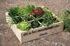 Deze deal kopen? Klik hier! Plant-pot-patio + Shopping