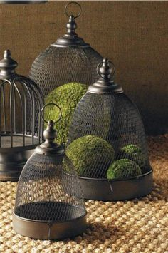 Break away from the traditional centerpiece bowl with these fashionable cage style mesh dome and trays. Fill them with decorative accessories like moss balls, flowers, seashells, or candles. Shabby, Farmhouse Style, Farmhouse Decor, Cloche Decor, Natural Living, Metal Trays, Bird Cages, Apothecary Jars, Glass Domes