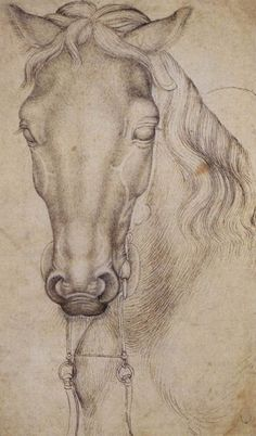 Pisanello Head of a horse 1437-38 drawing Louvre