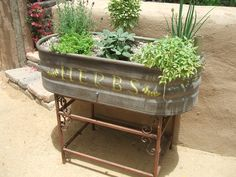 Horse trough garden...I'm so doing this on my deck!