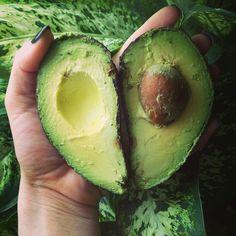 Avocados- healthy fats ftw :)