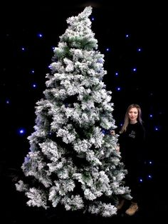 Snowy Tree - Jumbo - Type 2 | Traditional Christmas Party Theme | Traditional Christmas Party Theming Hire | Event Prop Hire