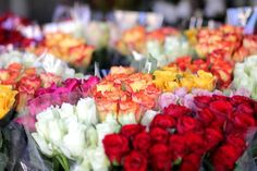 Image via We Heart It https://weheartit.com/entry/133952674/via/13802995 #beautiful #flowers #perfect #girly.love