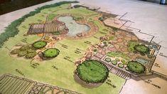 http://carexdesigngroup.com/wp-content/uploads/2017/11/color-hand-drawing-pool-design-carex-design-group.jpg