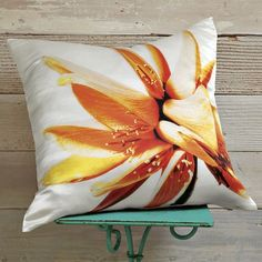 CLINTON FRIEDMAN CORAL TREE PILLOW COVER, $44.00