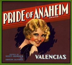 Anaheim Pride of Anaheim Orange Citrus Crate Label Art Print