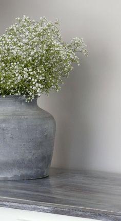 Mooie combinatie van ruig beton en sierlijk gipskruid.