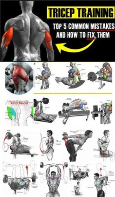 Workout on Week Chest & Triceps (Triceps Mistakes) - fitness. Fitness Workouts, Fitness Herausforderungen, Weight Training Workouts, Gym Workout Tips, Muscle Fitness, Workout Challenge, No Equipment Workout, Week Workout, Health Fitness
