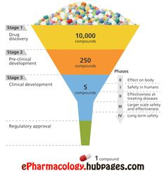 How are drugs developed and approved? The drug development process