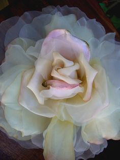 "Vintage 15"" Large Chiffon, Organdy and Silk Cream & Pink Blush Rose"