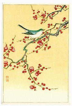 Ohara Koson: Bird and plum tree