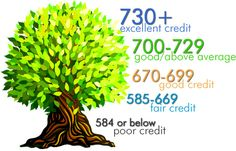 8 Needed Steps to Fix Your Credit Report Fast
