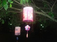 i met a thai lady with her kid hanging their chinese lanterns on the tree branch. @dkiara apt