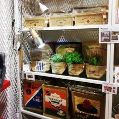 오가닉 Organic #memory / Your Lifetime Gallery ::: www.cubbying.com