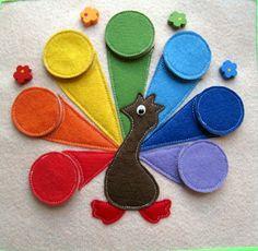 Colour wheel peacock