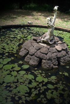Mermaid lily pond at Howey Mansion, Howey in the Hills, FL Garden Statues, Garden Sculpture, Narrow Staircase, Lily Pond, Water Features In The Garden, Old Florida, Cottage Design, Water Lilies, Water Garden