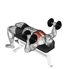 Barbell Squat, Strength Workout, Bench Press, Body Weight, Gym Workouts, Squats, Health Fitness, Exercise, How To Plan