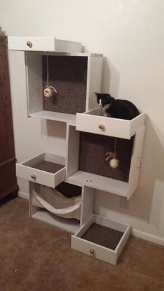 """Oreo""""s New Cat Tree made from drawers"""