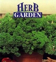 Afrodite Parsley 100 Seeds - Great Flavor, Great Look House Plants For Sale, Plants For Sale Online, Growing Seeds, Parsley Growing, House Plant Delivery, Types Of Herbs, Fruit Seeds, Planting Bulbs, Fish Dishes