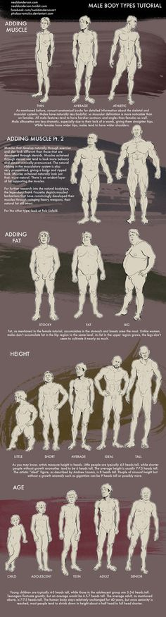 Male Body Types Tutorial by Phobos-Romulus (http://phobos-romulus.deviantart.com/art/Male-Body-Types-Tutorial-500949383) ★ || CHARACTER DESIGN REFERENCES (pinterest.com/characterdesigh) • Do you love Character Design? Join the Character Design Challenge! (link→ www.facebook.com/groups/CharacterDesignChallenge) Share your unique vision of a theme every month, promote your art, learn and make new friends in a community of over 12.000 artists who share the same passion! || ★