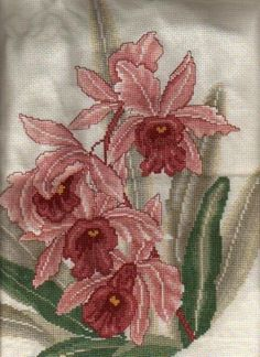 Cross Stitch Photo Album II: Ming Orchid (Front) - Stitched and Submitted by Just another stitcher Cross Stitch Numbers, Just Cross Stitch, Cross Stitch Needles, Cross Stitch Flowers, Cross Stitch Charts, Cross Stitch Designs, Cross Stitch Patterns, Cross Stitching, Cross Stitch Embroidery