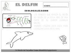 El delfín Fails, Logos, Fictional Characters, Montessori, Animals, Water Animals, Dolphins, Mermaids, Illustrations