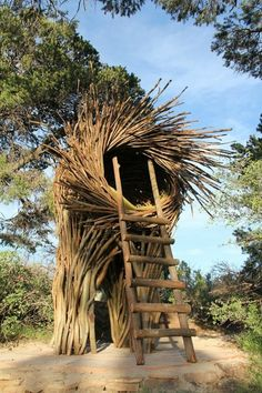 Human-Sized Nests with Ladders and Slides in Big Sur