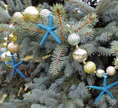 """Beach Christmas starfish garland. This faux nautical decor mercury glass ball garland adds sparkle and bling to your gorgeous coastal decor holiday tree!  It's made with acrylic faux mercury glass balls that sparkle and shine and we add great 4"""" REAL finger starfish dyed to a beautiful dark rich marine blue  for a pop of color.   Gorgeous dazzle and lots of shine for your tree or mantle! 60"""" long with hanger loop at each end."""