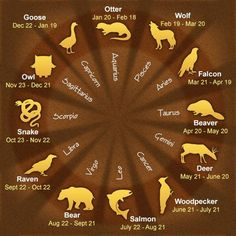 Native American zodiac chart... I Always did like Ravens.