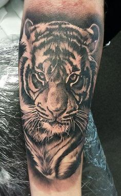 tattoo-arm-realistic-tiger.jpg (370×600)