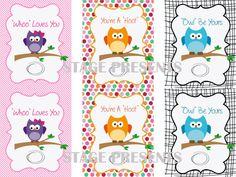 OWL Valentine's Day Printables, OWL Valentine's for Kids - Instant Download - DIY - www.stagedpresents.etsy.com - $5.00 #owl #valentinesday #childrensvalentines #printables #vday