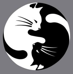 Yin Yang lucky cat tattoo - this would be nice with a watercolor wash instead of black CAT AND DOG YING YANG Yin Yang Tattoos, Tatuajes Yin Yang, Lucky Cat Tattoo, Tattoo Cat, Tiny Tattoo, Small Tattoos, Art Rupestre, Art Pierre, Kitty Tattoos