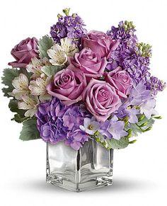 Sweet as Sugar by Teleflora Flowers, Sweet as Sugar by Teleflora Flower Bouquet - Teleflora.com