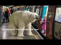 Polar Bear Roams London_ Sky Atlantic, Fortitude