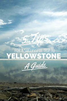 The College Gardener: Yellowstone Camping Trip Top 5 Tips