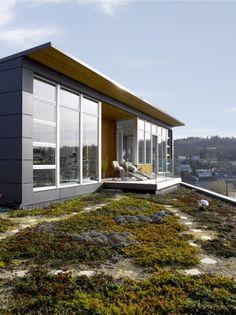 Ballard Cut Roof garden by Prentiss Architects photo by Alex Hayden