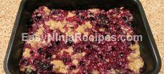 Oatmeal Blueberry Bars for the Ninja