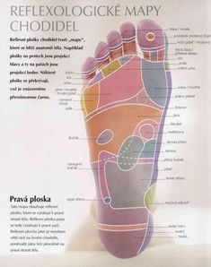 """A self massage sequence from a book I've bought """"Reflexology, Hands-on treatment for vitality and well-being"""". According to reflexology practitioners, reflex points on your feet and hands correspond. Hand Massage, Self Massage, Health And Wellness, Health Fitness, Foot Reflexology, Body Anatomy, Healthy Lifestyle Tips, Acupressure, Massage Therapy"""