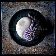yin and yang chrysanthemum