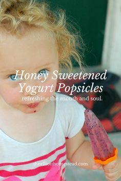 These homemade honey sweetened yogurt popsicles are fruity goodness for your mouth and soul. They're easy to make and help make summer a happy place. Scd Recipes, Whole Food Recipes, Healthy Recipes, Healthy Desserts, Toddler Meals, Kids Meals, Yummy Snacks, Delicious Desserts, Sicilian Recipes