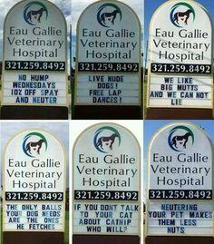 A veterinarian with a sense of humor