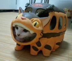 cat in cat bus from My Neighbor Totoro