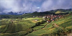 FRANTISEK ZVARDON Panoramas d'Alsace - photographe FRANTISEK ZVARDON - photos paysage