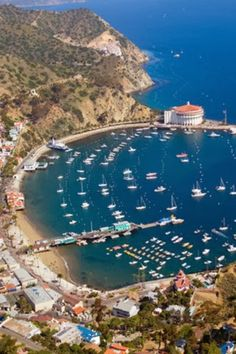 Catalina Island, California. I've only been there once, but it was so wonderful! The most colorful snorkeling! The late Jack LaLane (fitness buff) used to swim to Catalina from Long Beach, Calif. every year until he reached around 80 yrs. old. I would guess its about 40 miles? have to check on that...