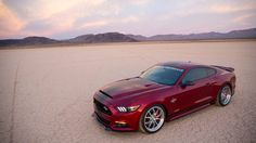 Gallery Shelby Mustangs Photo 25