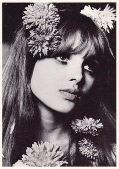 BIBA GIRL - MADDIE SMITH 1967