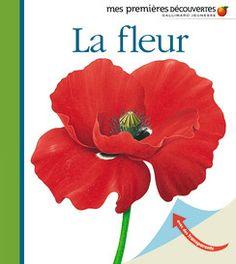 La fleur - Mes premières découvertes, nouvelle présentation - Livres pour enfants - Gallimard Jeunesse