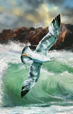 zeichne eine Möwe im Flug in Gouache: 9 Tausend … – tatyana moshkina – Join the world of pin Ocean Canvas, Canvas Art, Mini Canvas, Art Watercolor, Boat Painting, Sea Art, Seascape Paintings, Acrylic Art, Bird Art